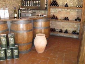 Wine Tasting in Tuscanny